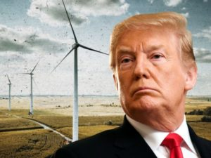 Trump's War On Windmills Just Got Even More Ridiculous